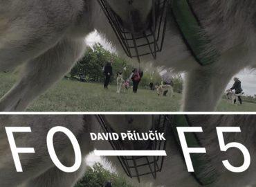 David Přílučík: F0—F5 v Nitrianskej galérii