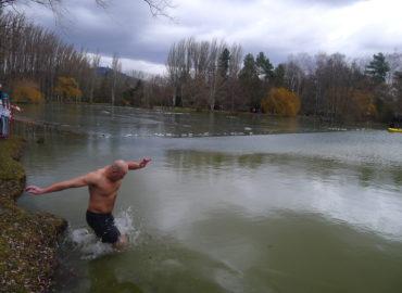 Ľadové medvede okúsia vody Hangóckej