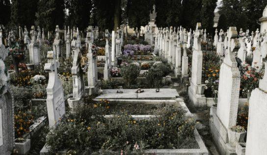 V Zlatých Moravciach rozširujú mestský cintorín