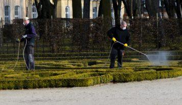 Zlaté Moravce predĺžili termíny splatnosti daní, verejné priestory rozsiahlo dezinfikujú