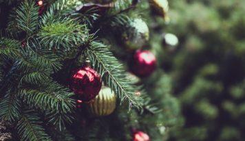 Kam so stromčekom po Vianociach?