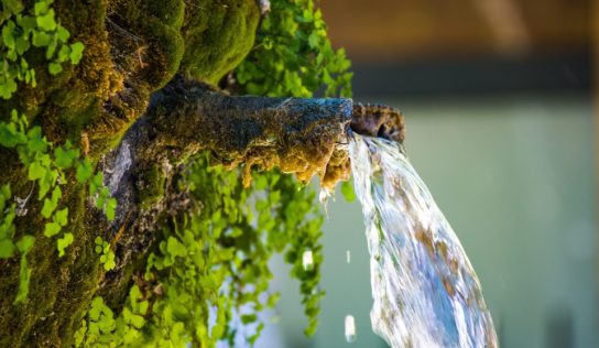 Hygienici kontrolovali kvalitu vody v nitrianskych prameňoch