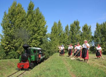 Slovenské poľnohospodárske múzeum predstaví výstavu Život s Covidom. Spustí aj poľnú železnicu