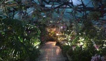 Botanická záhrada SPU sa pripojí k oslavám cestovného ruchu