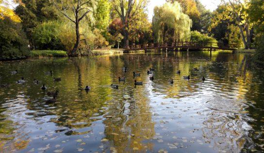 Jesenná Nitra vyráža dych