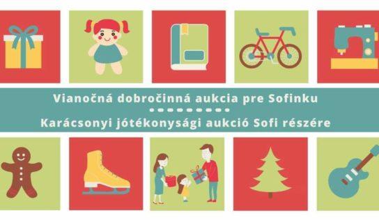 Obec Kolíňany organizuje vianočnú aukciu. Výťažok daruje malej Sofinke