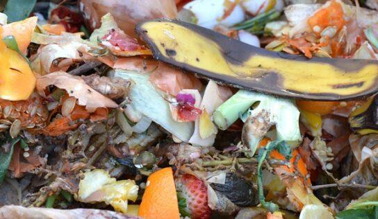 Návštevníci Trafačky sa naučia, ako sa dá kompostovať aj v byte