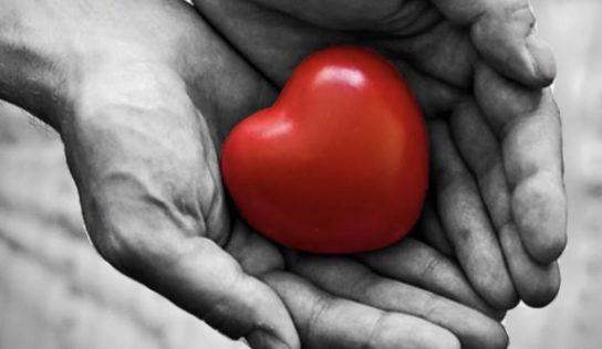 Dobrovoľnícka činnosť si zaslúži ocenenie. Srdce na dlani sa bude udeľovať aj tento rok